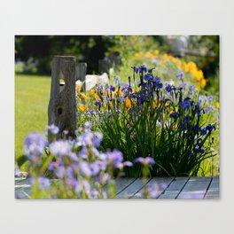 Georgeson Botanical Gardens, Fairbanks Alaska, Iris and Lilies Canvas Print