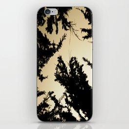 Exploration iPhone Skin