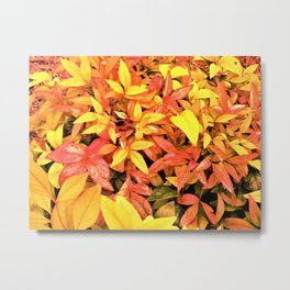 Pink and Yellow Leaves Metal Print