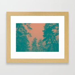 Trees & Mist Framed Art Print