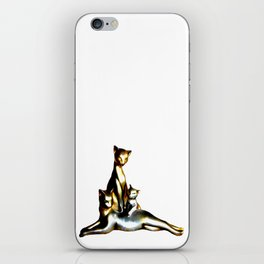 Two Cats And A Kitten iPhone Skin