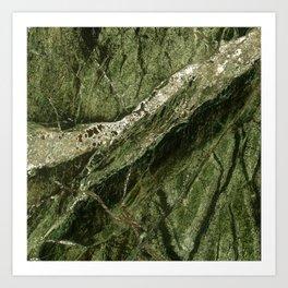 Marble Rain Forest Green Art Print