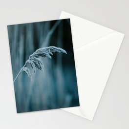 Frosted Grass II Stationery Cards