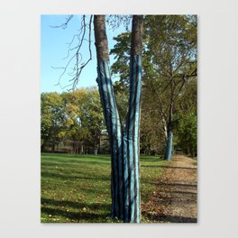 A tree with trousers Canvas Print