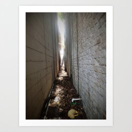 Charleston Alley Art Print
