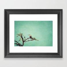 Hummingbird at rest Framed Art Print