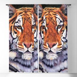 Tiger Sultan of Siberia Blackout Curtain