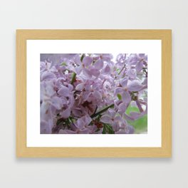 smell Framed Art Print