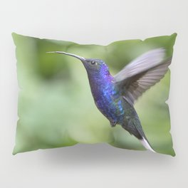 Violet Sabrewing Hummingbird in Flight Pillow Sham