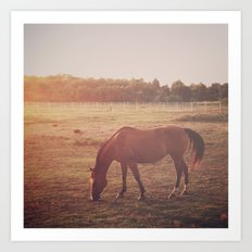 Horse (#7) Art Print