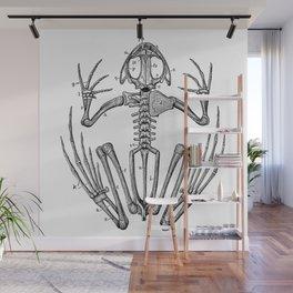 Frog skeleton Wall Mural