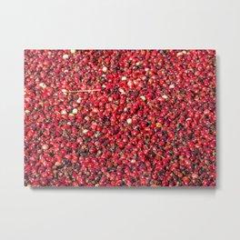 Cranberry Harvest #4 Metal Print
