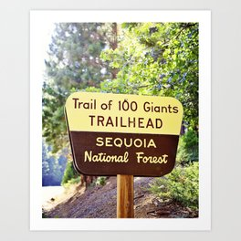 Trail of 100 Giants Vintage National Forest Sign Art Print