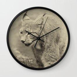 beautiful lynx Wall Clock