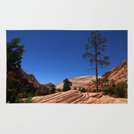 Zion Park Colors and Texture Rug