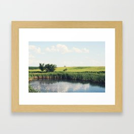 Trees and Water Framed Art Print