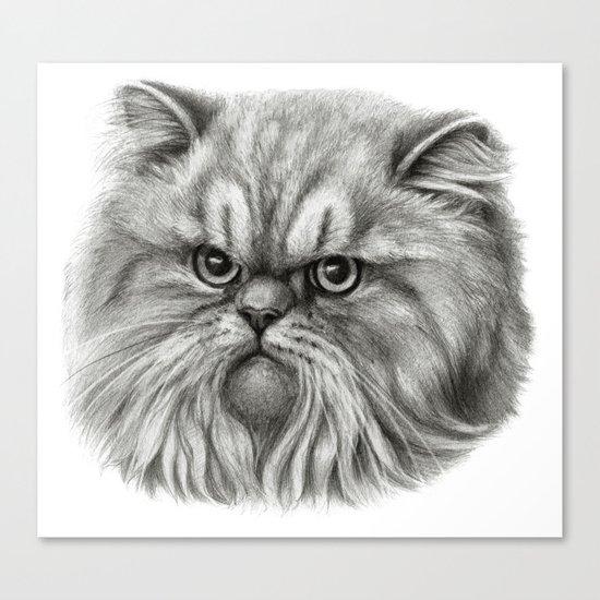 Persian Cat SK072 Canvas Print