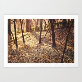 Bed of Leaves Art Print