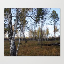 russia1 Canvas Print