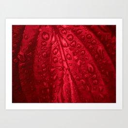 red passion I Art Print