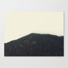 olympic peninsula 02 Canvas Print