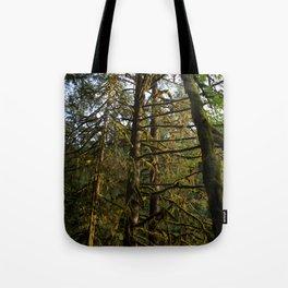 Golden Trees - Oregon Tote Bag