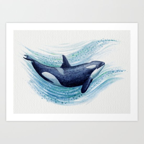 """""""Orca Spash"""" by Amber Marine ~ Watercolor Killer Whale Painting, (c) 2016 Art Print"""
