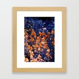 Infrarouge  Framed Art Print