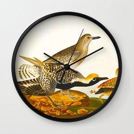 Grey plover John Audubon vintage scientific bird illustration Wall Clock