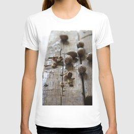 pecan T-shirt