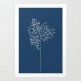 English Oak Blueprint Art Print