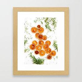 Pure Citrus (Color) Framed Art Print