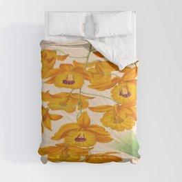 Dendrobium fimbriatum Vintage Botanical Floral Flower Plant Scientific Illustration Comforters