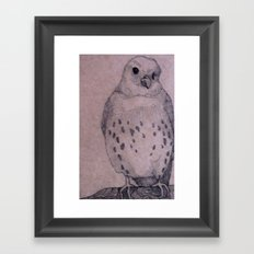 Curious Bird Framed Art Print