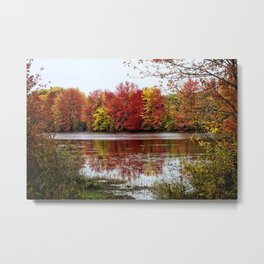 Fall Contemplation Metal Print
