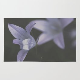 Botanical Still Life Photography Lily Wildflower Rug