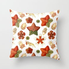 Sea Stars And Star Fish Throw Pillow