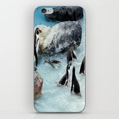 Penguins. iPhone & iPod Skin