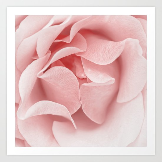 Pink flora Rose Bud- Roses and flowers Art Print