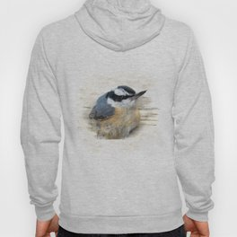 Red-breasted Nuthatch Hoody
