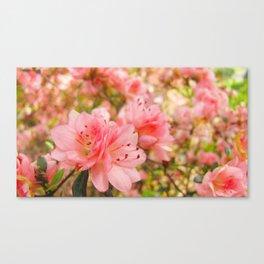 Softer Canvas Print