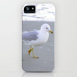 Sea Gull Stroll iPhone Case
