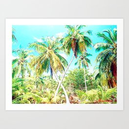 Cuba , Palmeras ( Cuba palms ) Art Print