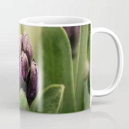 Hyacinths in Dew Coffee Mug