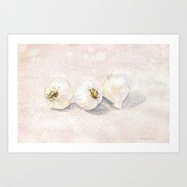 Garlic Watercolor Art Print