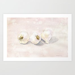 Garlic Watercolor Art Print
