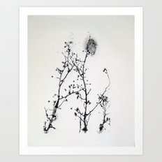Gunpowder Branches Art Print
