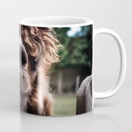 Curious Llama Coffee Mug