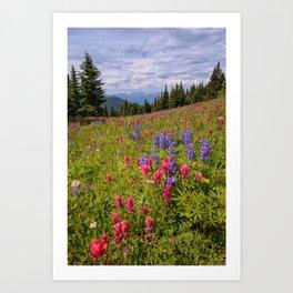 SHRINE RIDGE COLORADO SUMMER MOUNTAIN WILDFLOWERS LANDSCAPE PHOTOGRAPHY Art Print