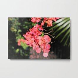 Hot Coral Floral Metal Print